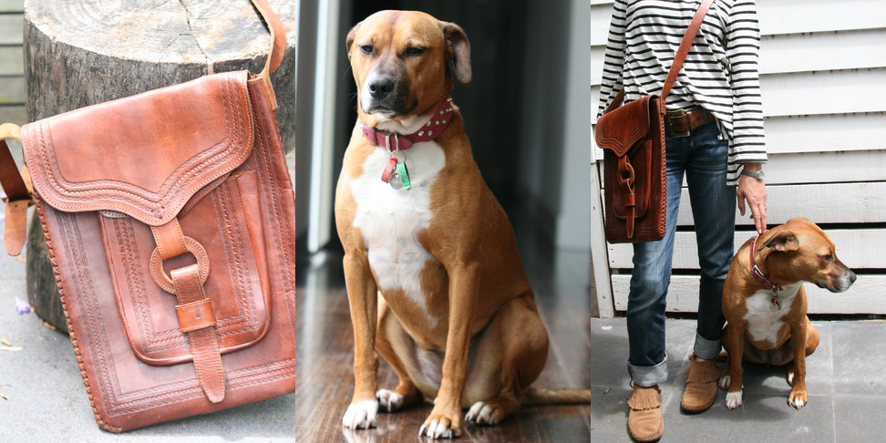 Tan leather tooled bag, $40 from The Salvo's; Tan and white Staffy cross, $230 from Save-a-Dog Scheme; Old things feel new again - even me.