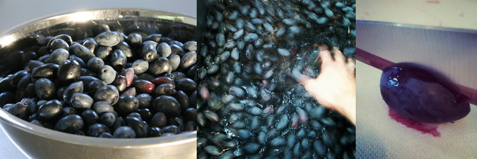 3.5 kilos of the finest Kalamata olives from The Urban Nest Estate! ; Washing; Slitting down each side of each olive.