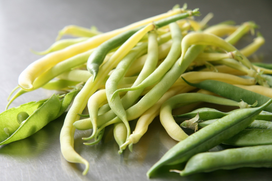 The first crop of crisp, yellow beans.