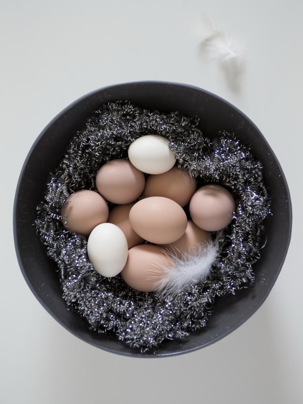 The Urban Nest Egg Nest